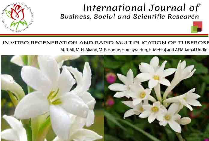 <i>IN VITRO </i>REGENERATION AND RAPID MULTIPLICATION OF TUBEROSE