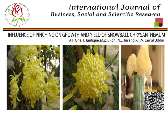 INFLUENCE OF PINCHING ON GROWTH AND YIELD OF SNOWBALL CHRYSANTHEMUM