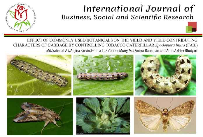 EFFECT OF COMMONLY USED BOTANICALS ON THE YIELD AND YIELD CONTRIBUTING CHARACTERS OF CABBAGE BY CONTROLLING TOBACCO CATERPILLAR Spodoptera litura (FAB.)