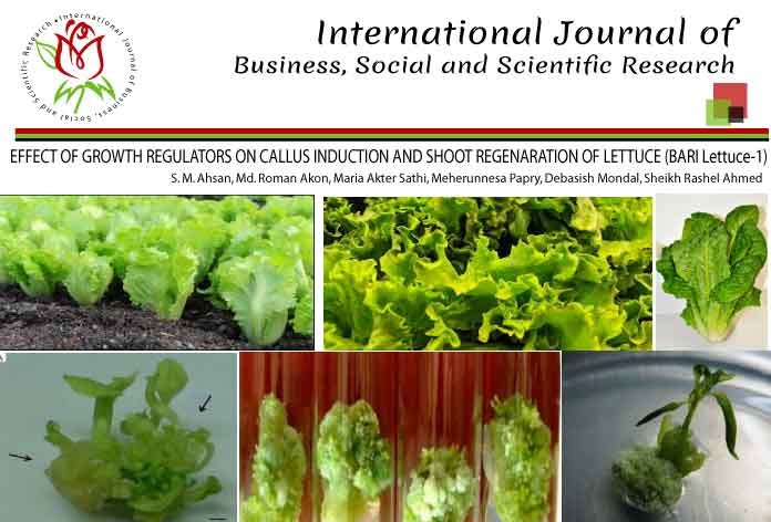 EFFECT OF GROWTH REGULATORS ON CALLUS INDUCTION AND SHOOT REGENARATION OF LETTUCE (BARI Lettuce-1)