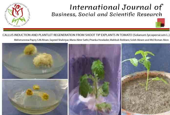 CALLUS INDUCTION AND PLANTLET REGENERATION FROM SHOOT TIP EXPLANTS IN TOMATO (Solanum lycopersicum L.)