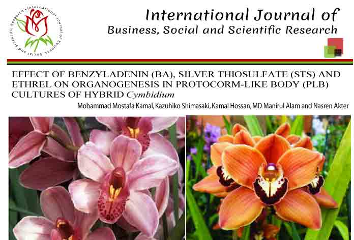 EFFECT OF BENZYLADENIN (BA), SILVER THIOSULFATE (STS) AND ETHREL ON ORGANOGENESIS IN PROTOCORM-LIKE BODY (PLB) CULTURES OF HYBRID Cymbidium