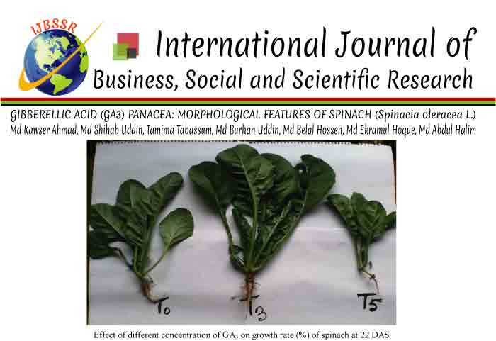 GIBBERELLIC ACID (GA3) PANACEA: MORPHOLOGICAL FEATURES OF SPINACH (Spinacia oleracea L.)