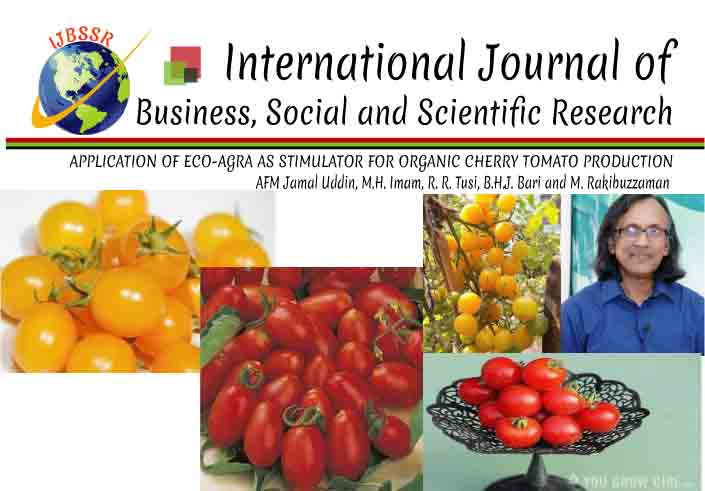 APPLICATION OF ECO-AGRA AS STIMULATOR FOR ORGANIC CHERRY TOMATO PRODUCTION