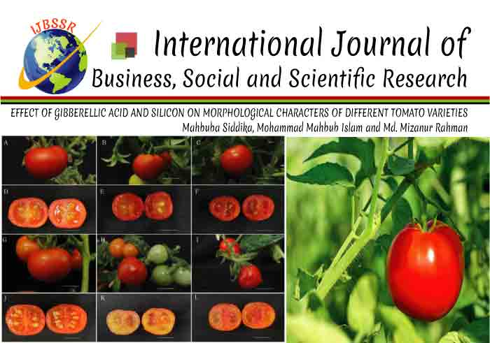 EFFECT OF GIBBERELLIC ACID AND SILICON ON MORPHOLOGICAL CHARACTERS OF DIFFERENT TOMATO VARIETIES